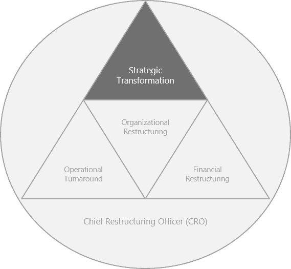 Strategische Transformation EN - Strategic Transformation